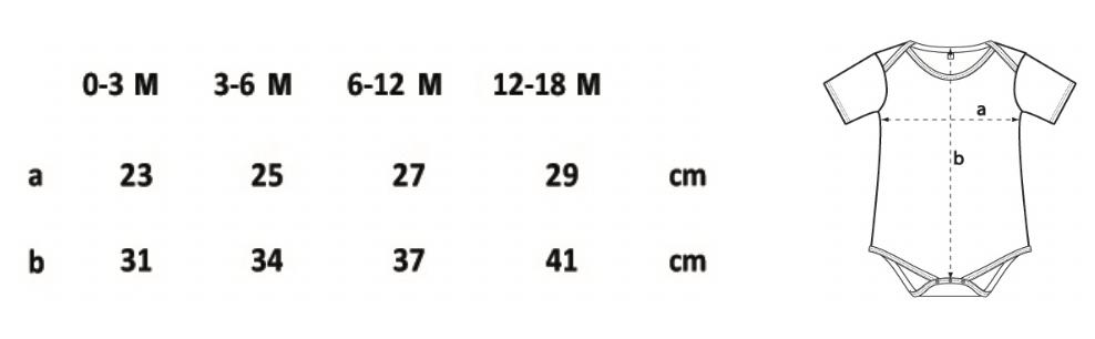 guide des tailles bodies coton biologique